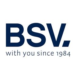 Página web de BSV