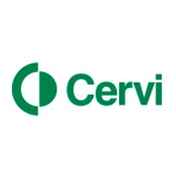 Página web de Cervi