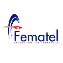 Página web de Fematel