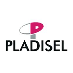 Página web Pladisel